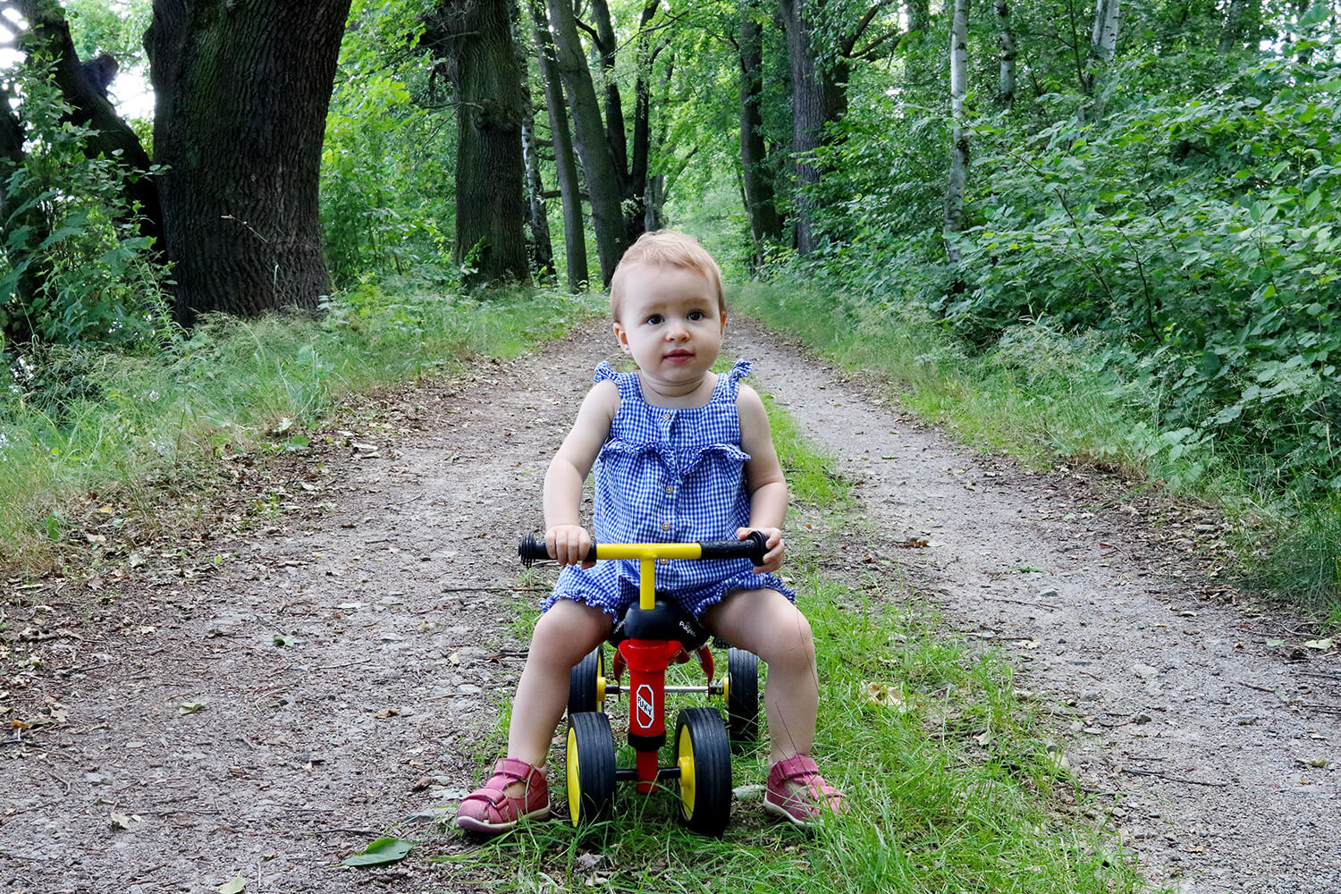 family photo of a little girl on a balance bike in nature