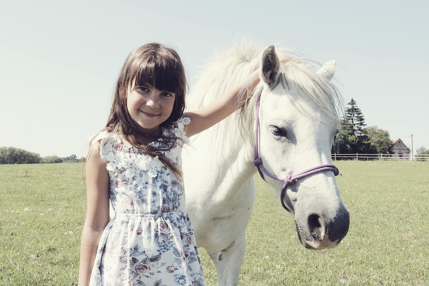 family photo of a little girl stroking a pony in nature