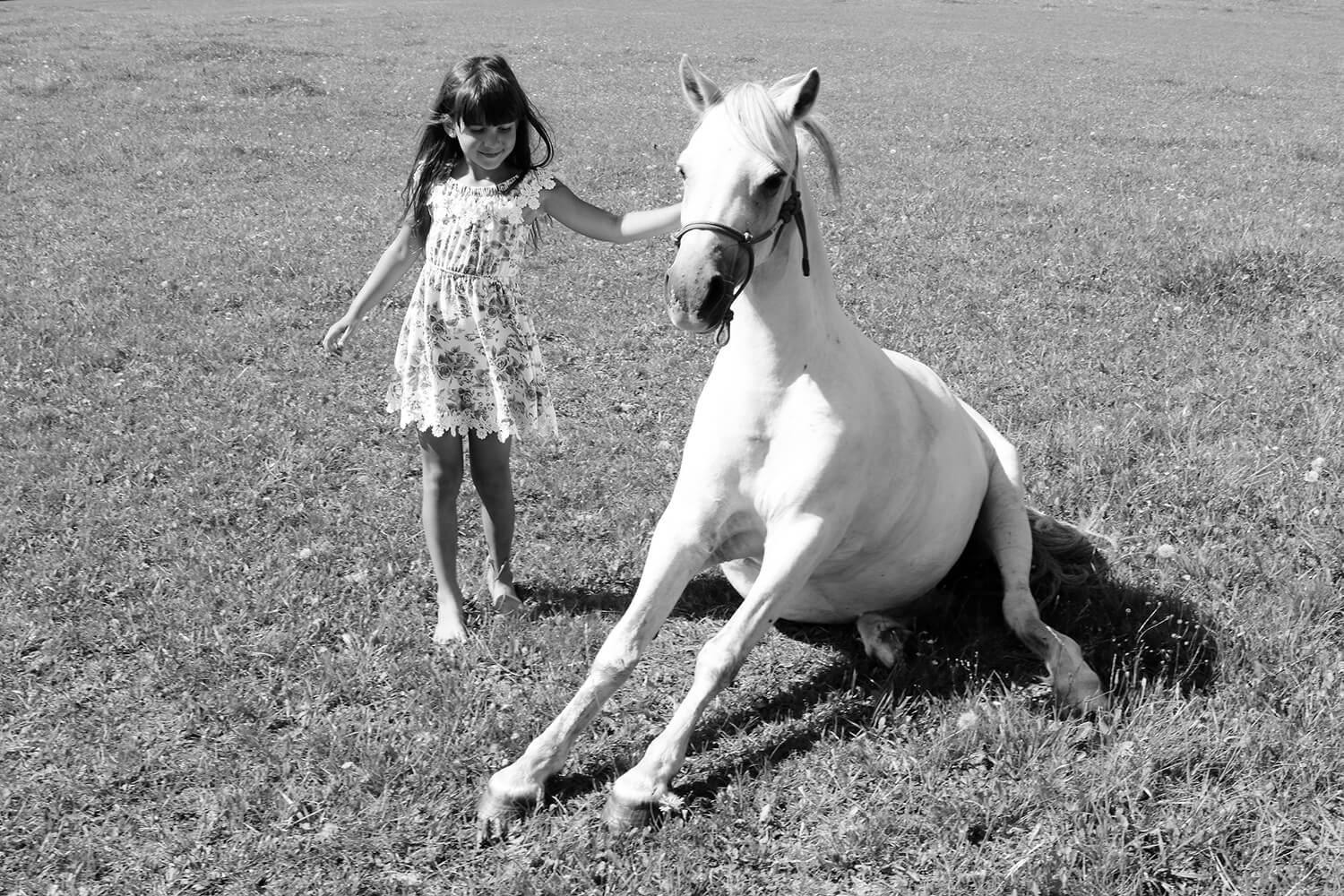 black and white family photo of a little girl with a horse in nature