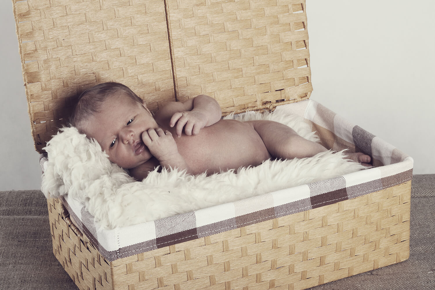 family photo of a newborn in a basket