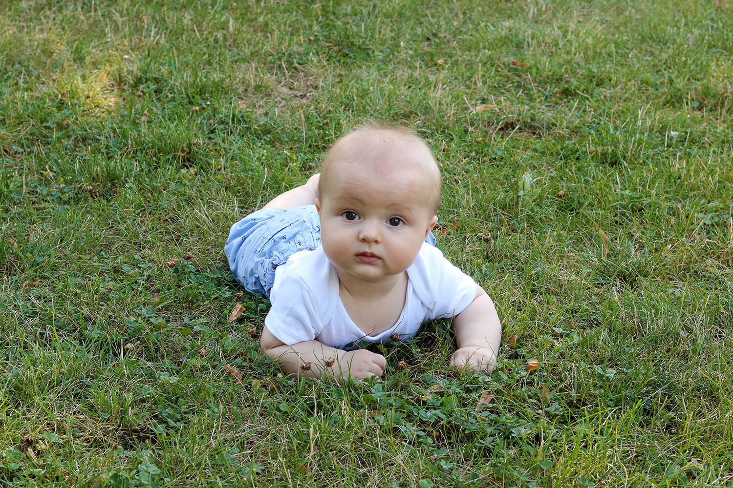 family photo of a toddler on the grass